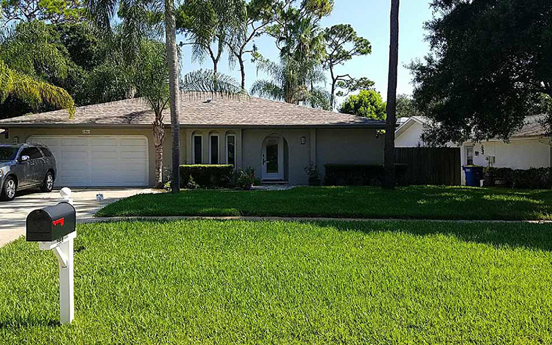 Lawn Care Tampa FL