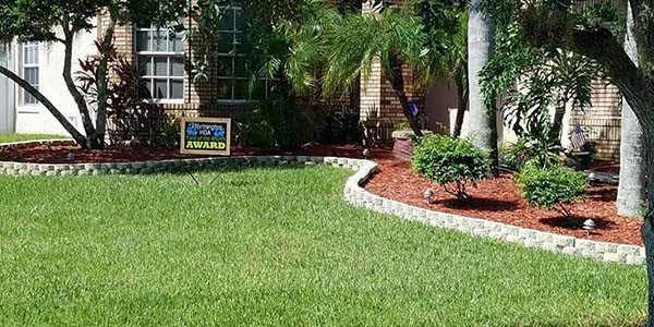 How To Have The Best Looking Lawn On Your Block Assure Green