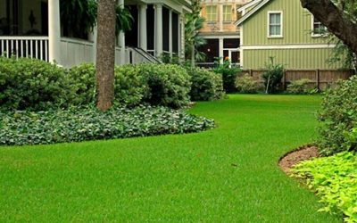 Fall Tips for a Better Lawn